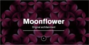 Moonflower-Linea-Light